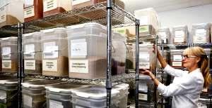 Restaurant storage